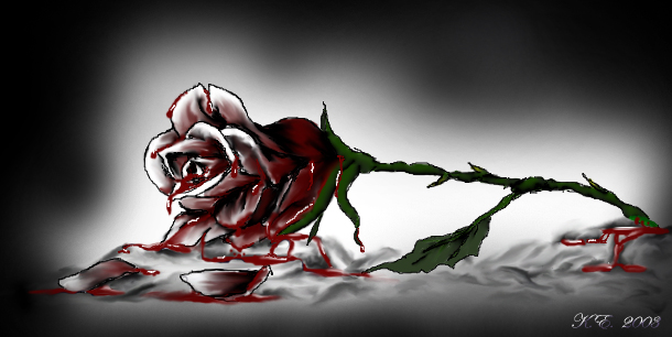 bleeding_rose[1].jpg